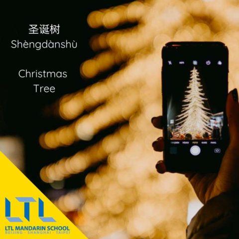 Christmas in China - Christmas Tree